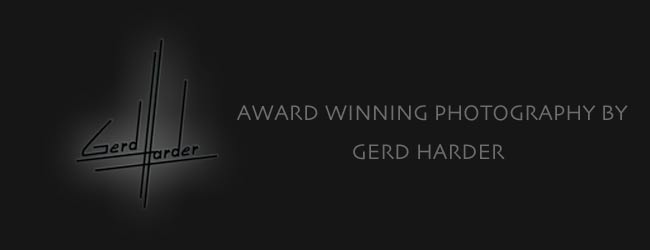 award winning photography by dania & gerd harder at harder photography in titusville florida